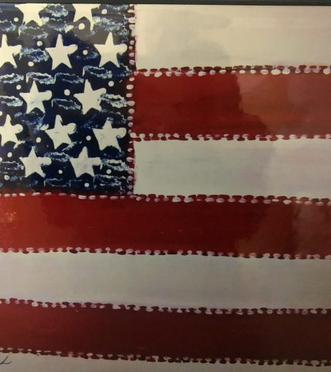 America The Beautiful Flag By Frank Dubek